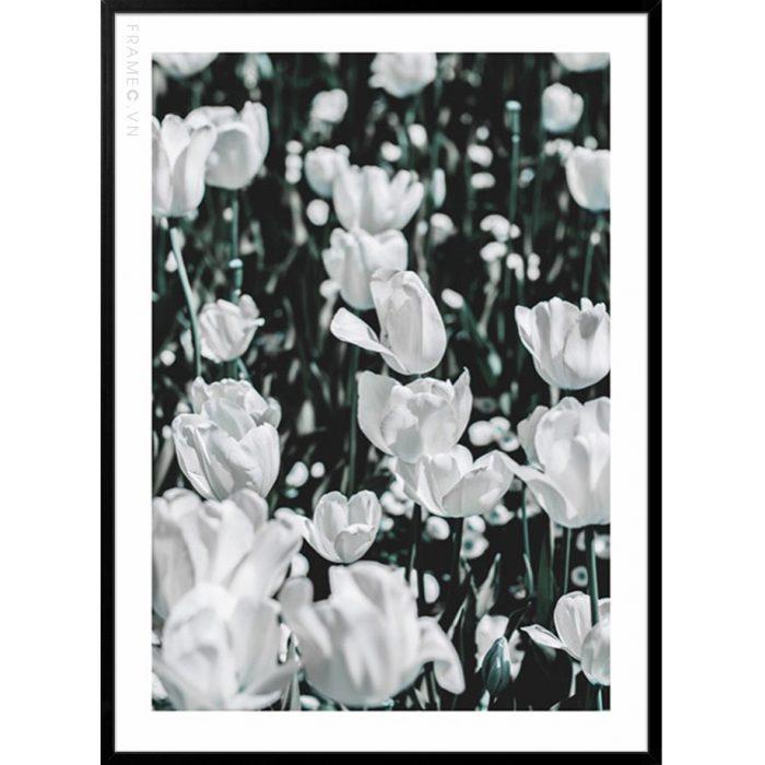 Tranh_treo_tuong_Frame_C_Botanicals_2